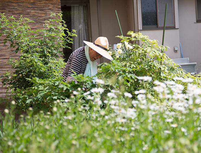 カーサ・デ・ソル諏訪湖(介護付き有料老人ホーム)の1階中庭には綺麗な花々で溢れており、見る人の心を癒します。