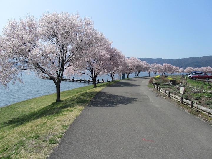 諏訪湖ジョギングロード