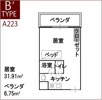 type_b_2